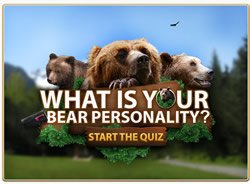 Your Bear Personality
